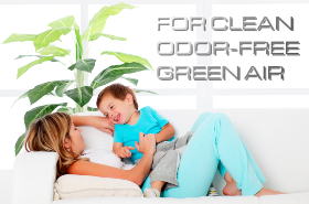 remove odors and purify home air with ozone